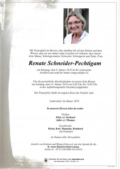 Schneider-Pechtigam