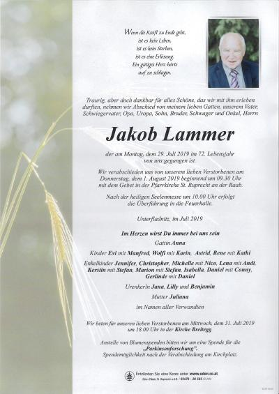 Lammer